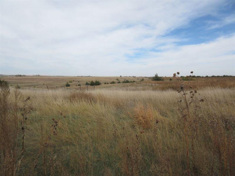 Eustis Crep And Range : Eustis : Frontier County : Nebraska