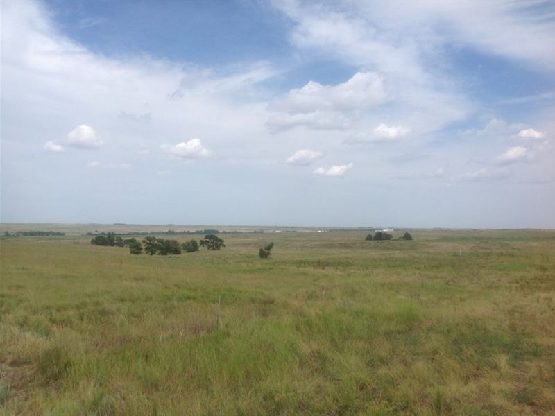 Chappell Dryland And Grass : Chappell : Deuel County : Nebraska