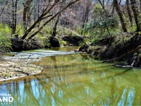 Little New River Recreation Tract : Brilliant : Marion County : Alabama