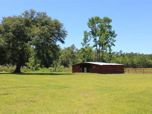 National Forest 40 Acre Farm : Shulerville : Berkeley County : South Carolina