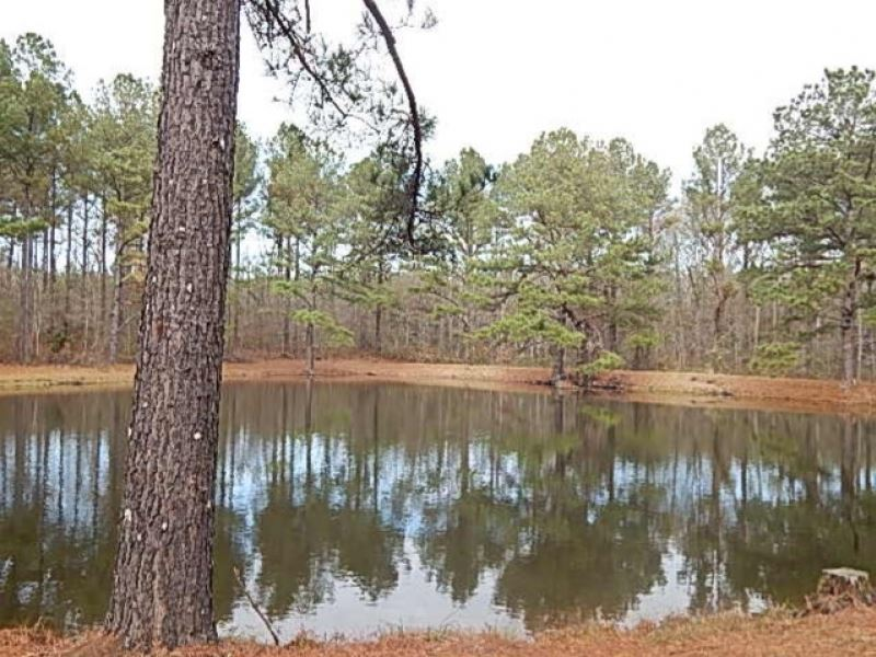 103 Acres In Rankin County Known As : Brandon : Rankin County : Mississippi