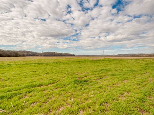 146 Ac Farm On The Buffalo River : Hurricane Mills : Humphreys County : Tennessee