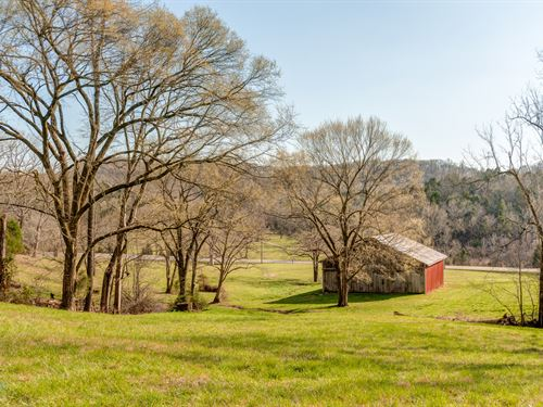 140 Ac Good Mix Of Pasture & Timber : Mount Pleasant : Maury County : Tennessee