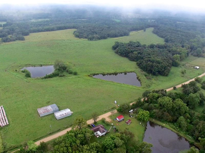 80 Acres Lipton Rd : Syracuse : Morgan County : Missouri