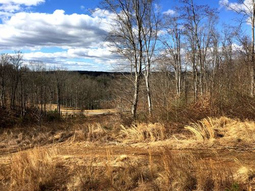 Building Lots, Sml - 156 Acres : Goodview : Bedford County : Virginia