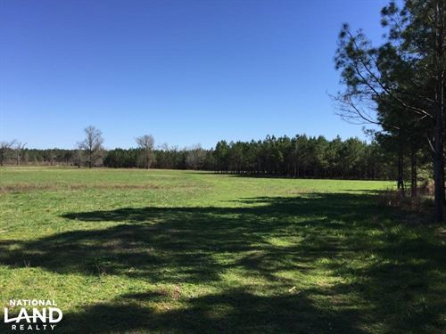 Upper Big Black 245 Farm : Eupora : Webster County : Mississippi