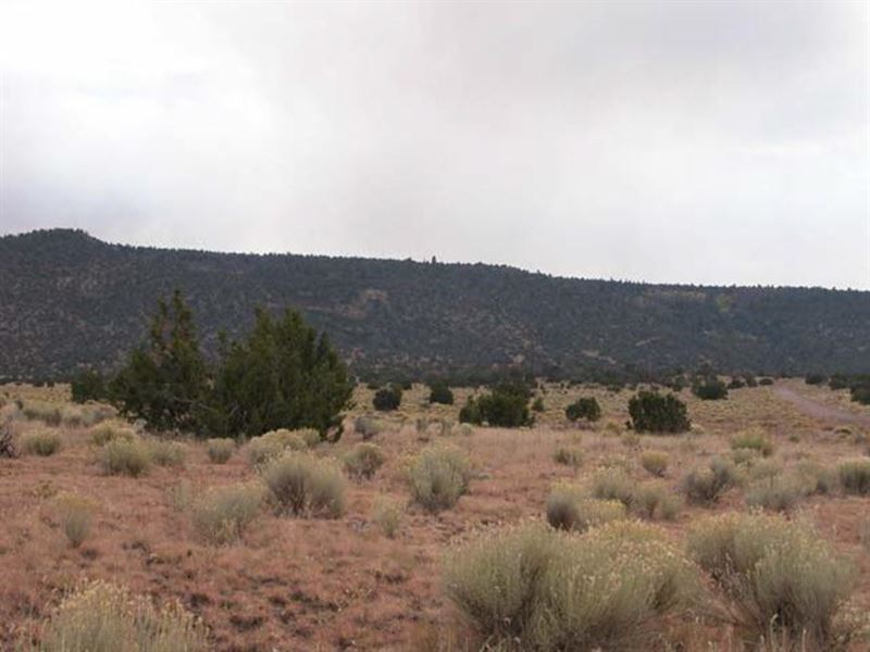 105 Acres Mary Cox Ranch : Trinidad : Las Animas County : Colorado