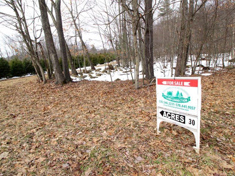 30+/- Acres Of Land In Benton : Benton : Columbia County : Pennsylvania