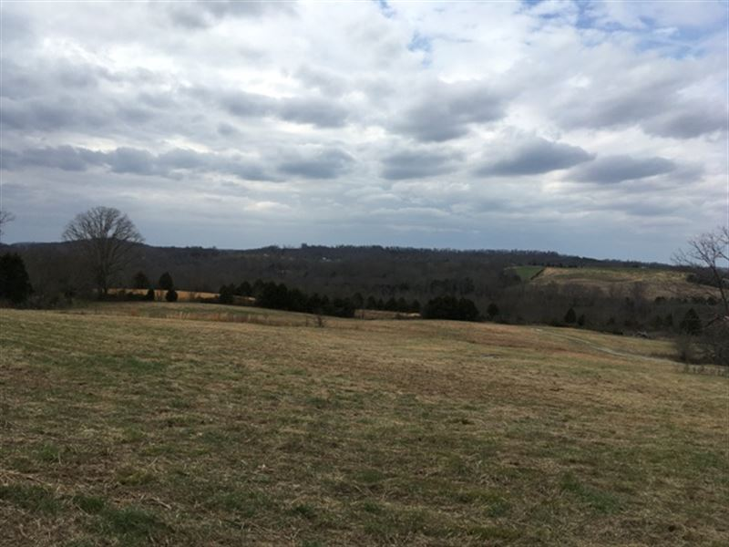 60+/- Ac Farm & Personal Property : Brownsville : Edmonson County : Kentucky
