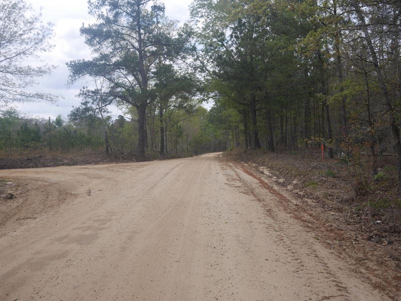 Sonny Allen Rd : Millen : Jenkins County : Georgia