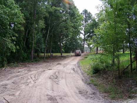 Appleton Tract - 155.6 Acres : Appleton : Allendale County : South Carolina