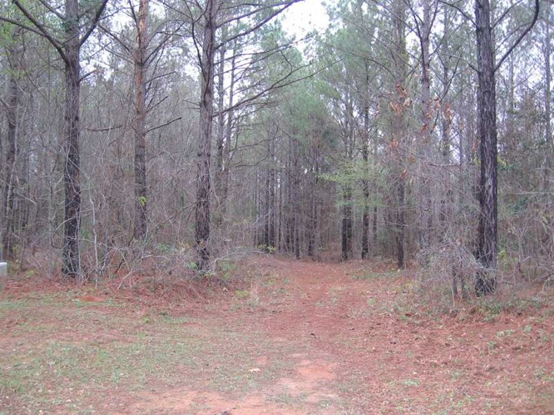 Recreational/Cabin Tract : Philadelphia : Neshoba County : Mississippi