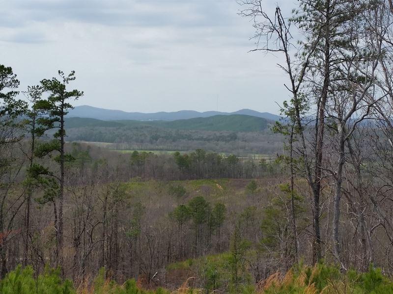 200+/- Acres Timberland Tnf : Munford : Talladega County : Alabama