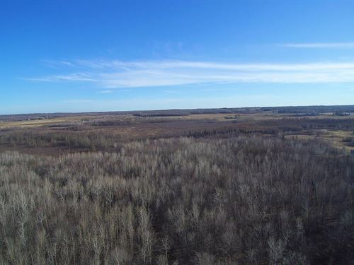 285 Acre Hunting Parcel Buildable : Cornell : Chippewa County : Wisconsin