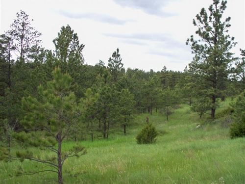 Montana, Musselshell County : Roundup : Musselshell County : Montana
