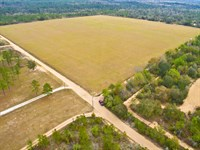 40 Acre Pasture Farmland Fencing : Fountain : Bay County : Florida