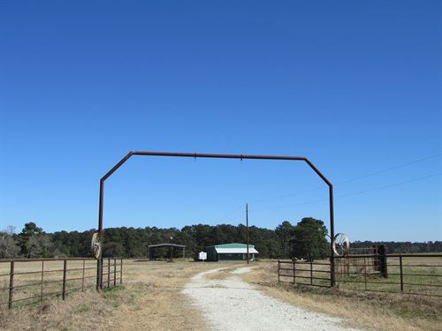 East Texas Cattle Ranch : Kennard : Houston County : Texas