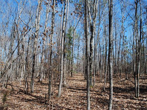 53.21 Acre Recreational Tract : Union : South Carolina