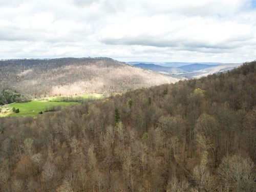 638 Acres In Hardwood Timber : Jamestown : Fentress County : Tennessee