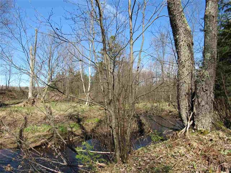 31 Acres McCallum Ln 1100173 : Lake Linden : Houghton County : Michigan