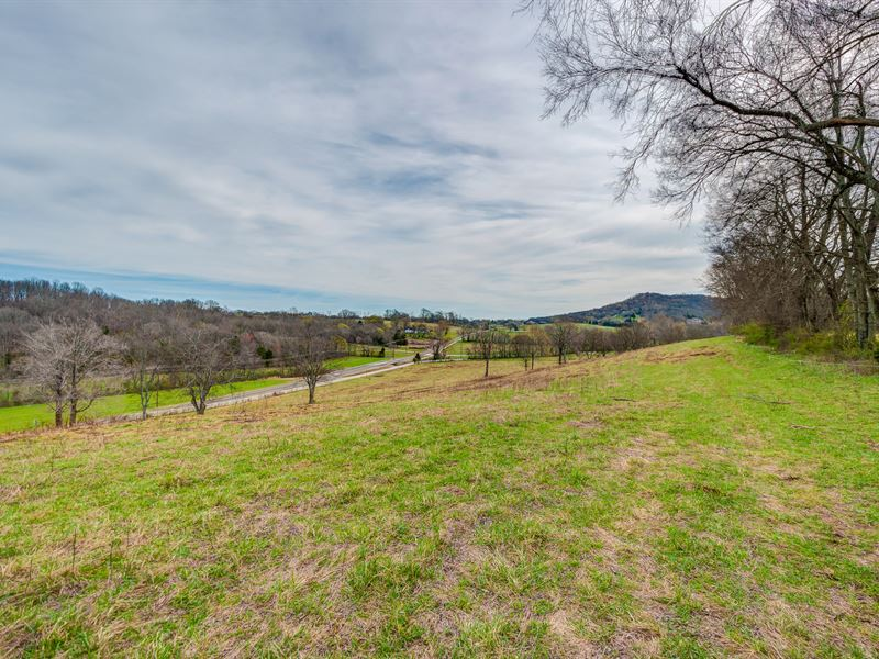 155 Ac Gorgeous Farm With Pond : College Grove : Rutherford County : Tennessee