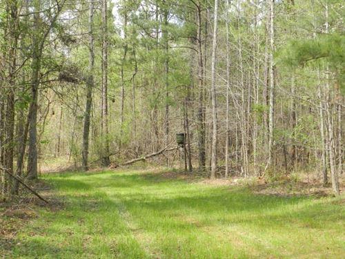 Lake Country Timber Tract : Eatonton : Putnam County : Georgia