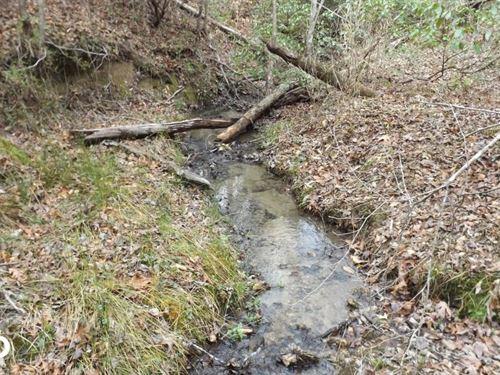 41 Acres Habersham Wooded Land : Clarkesville : Habersham County : Georgia