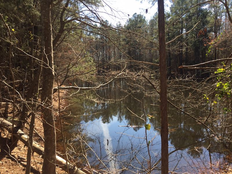 Beautiful Acreage With Pond : The Rock : Upson County : Georgia