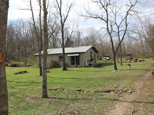 Sizemore Rd - 70 Acres : Lucasville : Pike County : Ohio