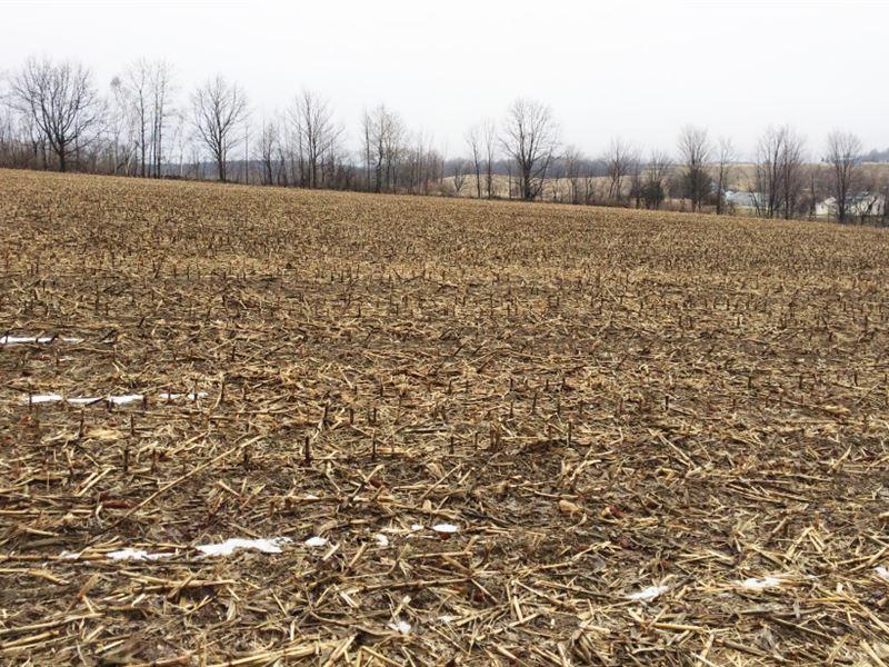 154 Acres Farmland Near Corning Ny : Campbell : Steuben County : New York
