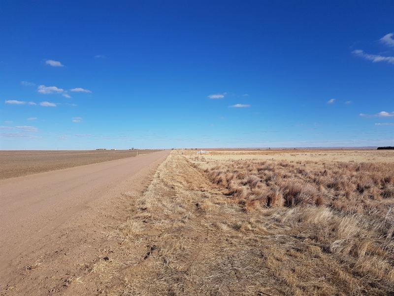 Logan County Expired Crp : Sterling : Logan County : Colorado