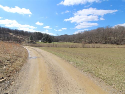 Tr 409 - 16 Acres : Warsaw : Coshocton County : Ohio