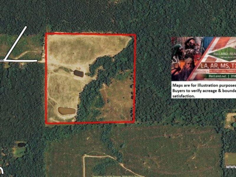 40 Ac Pasture With Home Site Poten : Bastrop : Morehouse Parish : Louisiana