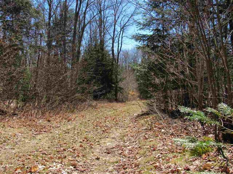Hiawatha's Playground Mls 37738 : Newberry : Luce County : Michigan