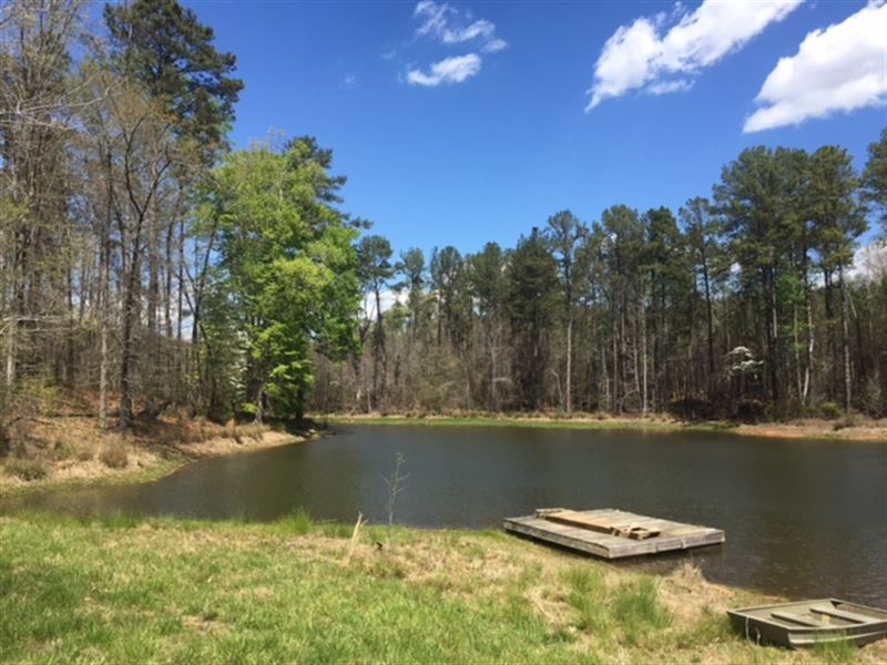 Mature Timber With Gorgeous Ponds. : Madison : Morgan County : Georgia