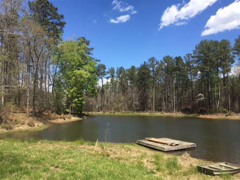 Beautiful Hardwoods Gorgeous Ponds : Madison : Morgan County : Georgia