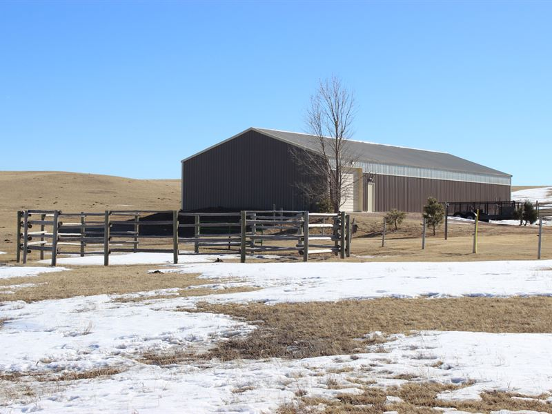 The Perfect Horse Farm : Pine Bluffs : Laramie County : Wyoming