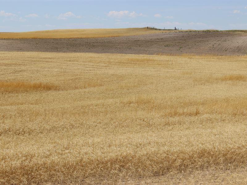 Nebraska Farm And Pastureland : Harrisburg : Banner County : Nebraska
