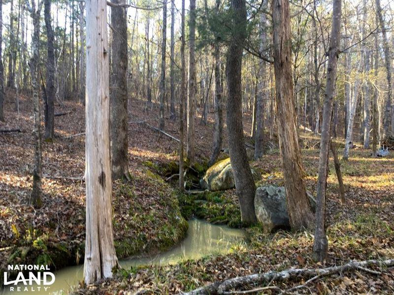 Ridgeway Hunting Land : Ridgeway : Fairfield County : South Carolina