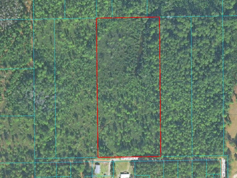 10 Acres - Mill Creek Ranches : Fort McCoy : Marion County : Florida