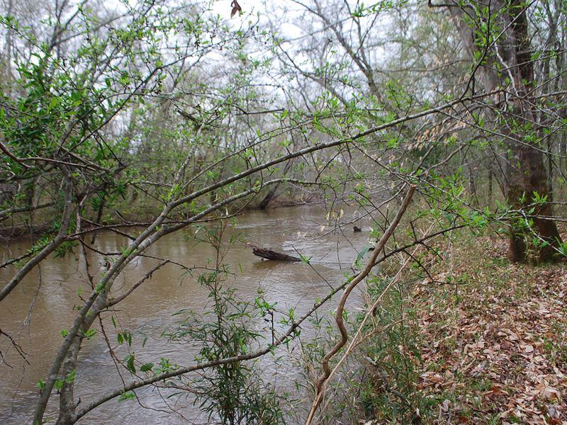 133 Acres Along Fairforest Creek : Jonesville : Union County : South Carolina