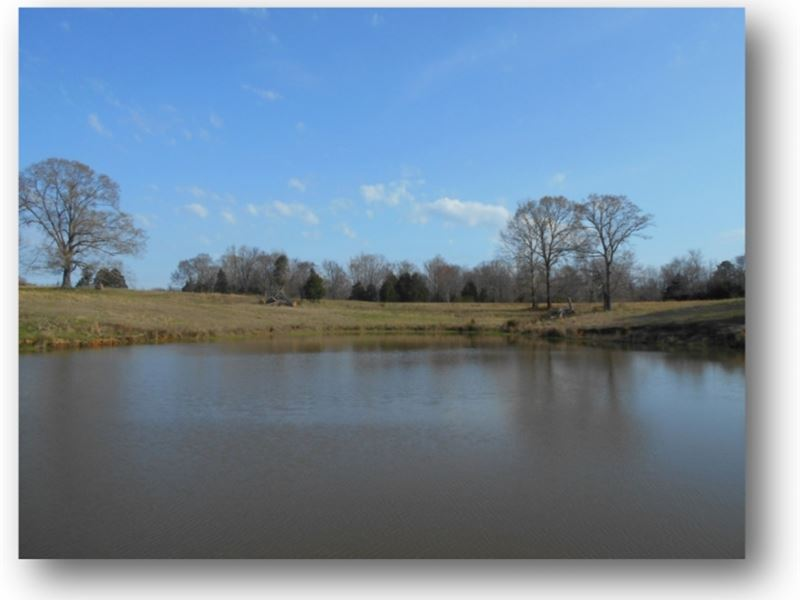 54.13 Acres In Lafayette County : Como : Lafayette County : Mississippi