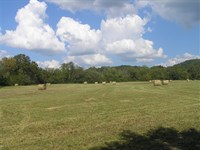 28 Acres with Panoramic Views : Pikeville : Bledsoe County : Tennessee