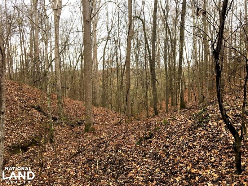 Bear Creek Homesite And Recreationa : Hodges : Franklin County : Alabama