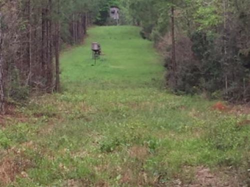 Land For Sale South Pike Ms : McComb : Pike County : Mississippi