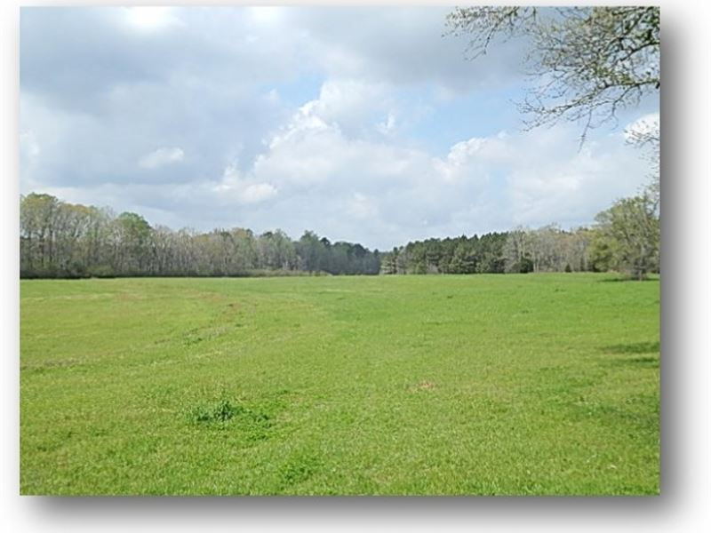 165 Acres In Leake County : Thomastown : Leake County : Mississippi