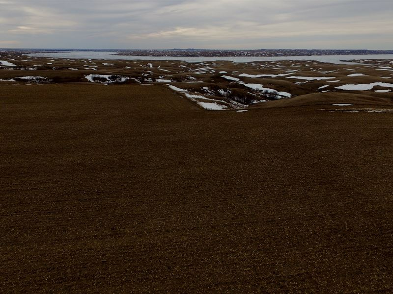 Farm Ground Over Lake Oahe In S.D. : Glenham : Campbell County : South Dakota