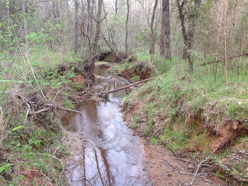 Rocky Creek : Monticello : Jasper County : Georgia