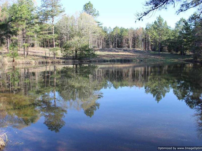 Recreational/Estate Property : Pickens : Madison County : Mississippi