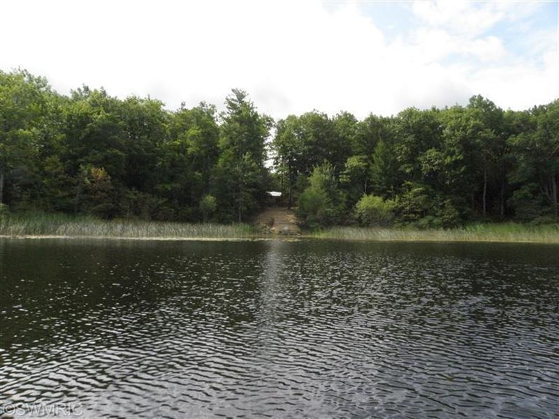 Tainer Lake Front With 3 Cabins : Manistee : Mason County : Michigan